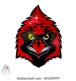 Bird head isolated on white. Logo for any sport team cardinals