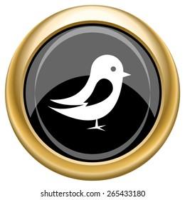Bird icon. Internet button on white  background. EPS10 Vector.