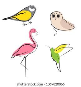 Bird illustration set. Flamingo, tit, owl, colibri