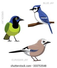 Bird Jay Set Cartoon Vector Illustration