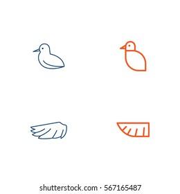 Bird Line Icon Logo Vector Set Element