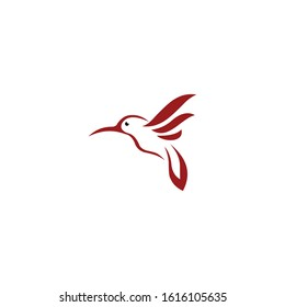 Bird logo design vector. Colibri icon