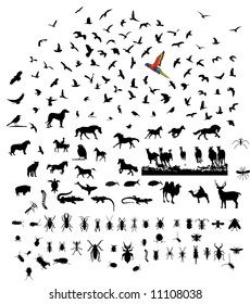 Bird mammal insect reptile mixed wild animal silhouettes set