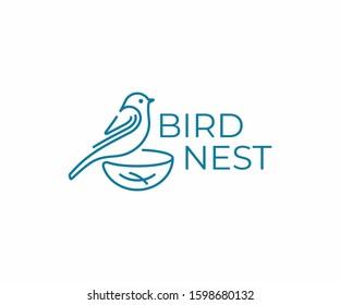 Bird with nest logo design. Bird watching vector design. Birding logotype