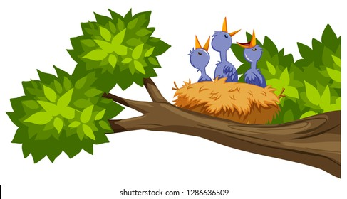 bird nest on tree branch illustration