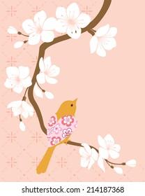 Bird on blossom cherry branch.