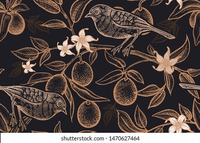 Bird on a branch of citrus tree. Seamless vector background with fruits and kumquat flowers. Pattern with plants and birds. Vintage. Print gold foil on black.