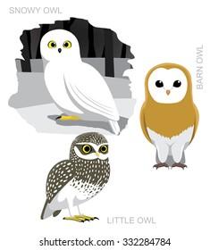 Bird Owl Set Cartoon Vector Illustration
