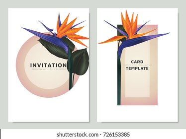 Bird of paradise flowers and leaves with pink circle and triangle frame,  invitation card template design