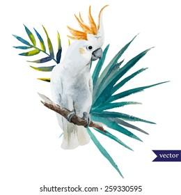 bird, parrot, hibiscus, jungle, watercolor