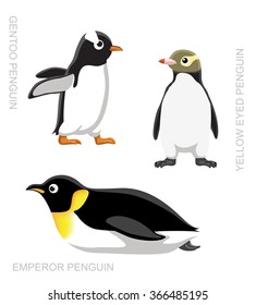 Bird Penguin Set Cartoon Vector Illustration
