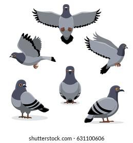 Птица Голубь Поз Мультфильм Векторный Иллюстрация