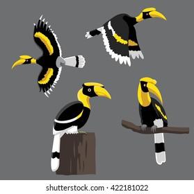 Bird Poses Great Hornbill Vector Illustration
