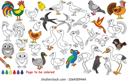 Bird set to be colored, the coloring book for preschool kids with easy educational gaming level.
