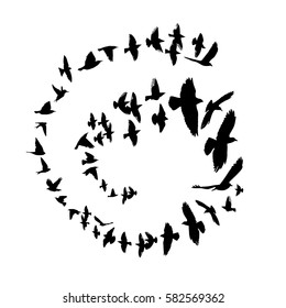 bird silhouette in a circle. Vector