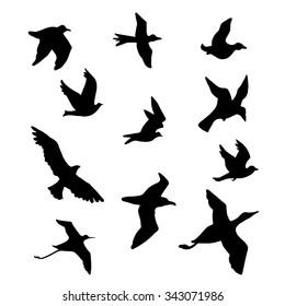 Bird silhouettes vector illustration (logo, icon,drawing)