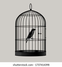 Bird sitting inside a cage. Vintage engraving stylized drawing. Vector illustration