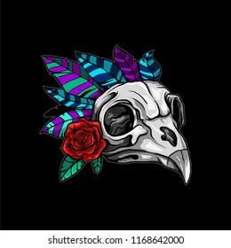 Bird skull illustration