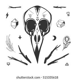 Bird skull, minerals, sticks, feathers and mystic gothic symbols. Mysterious vector illustration with bird skull isolated on white. Hand drawn birds skull and shamanic objects.