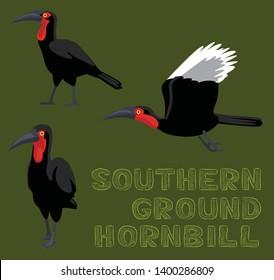 Bird Southern Ground Hornbill Cartoon Vector Illustration