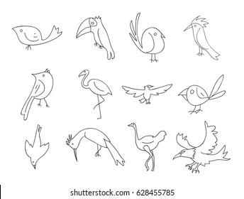bird thin line icon hand drawn vector set line art illustration