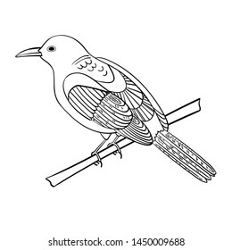 Bird - thrush, sketch.  Kids, vector image on a white background isolated. Use for magazines, children's books, colorings, prints on clothes.