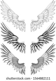Bird wings set isolated on a white background. Vector illustration. Monochrome.