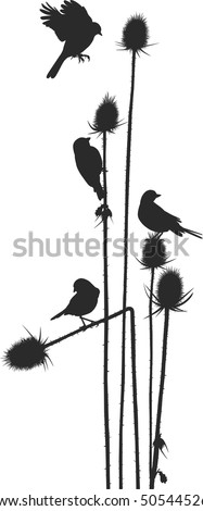 Birdie on a thistle silhouette