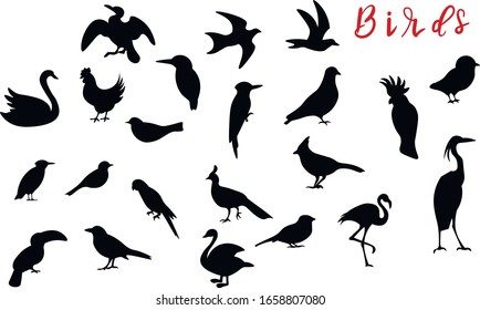 Birds, animal silhouette vector design elements on white background. Concept for icon, logo, print , cards