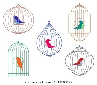 Birds in cages collection