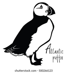 Birds collection Atlantic puffin Black and white vector