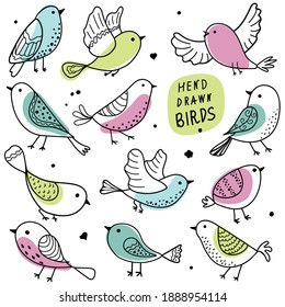 Birds collection. Colorful hand-drawn bird. Doodle. Black line on a white background. Vector illustration. Set.