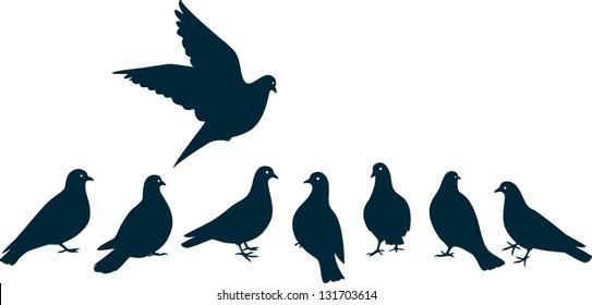 Birds Dove