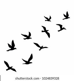 birds fly away vector