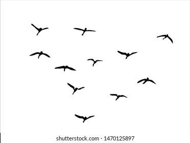 birds fly vector design hand drawn