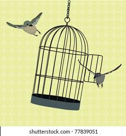 birds flying around jiggling cage