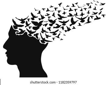 birds flying human head