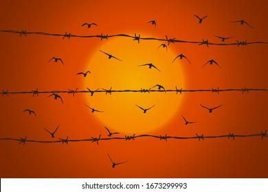 Vögel, die über gebrochenem Stacheldraht fliegen