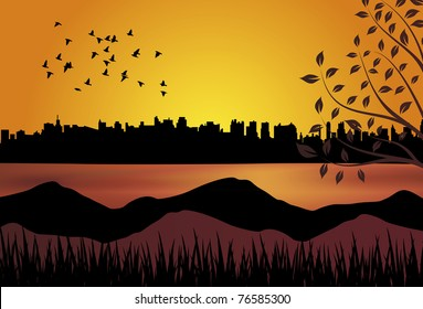 Birds flying over a lake in front of a city at sunset