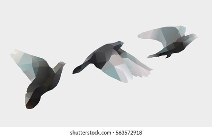 Birds Flying, polygon illustration of dove, logo