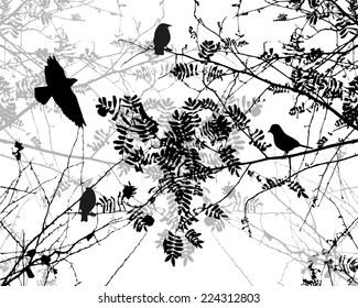 Birds flying and tree branches. Vector