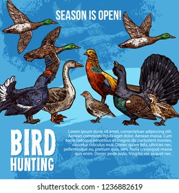 Birds hunt open season vector poster. Hunting sport adventure design of wild birds duck and peacock, grouse or blackcock and capercaillie with goose, quail and hazel-hen, pheasant and partridge