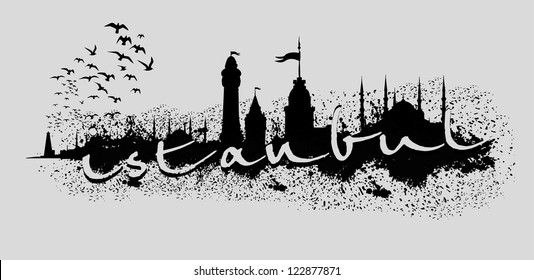 birds and istanbul city vector art