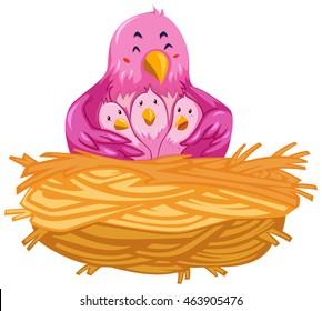 Birds living in the nest illustration