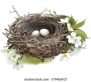 Bird's Nest. Hand drawn vector illustration of a nest with two white eggs, surrounded by spring flowers and green shoots, on white background.