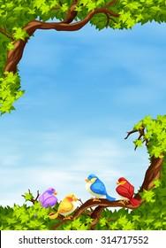 Birds on the branch at daytime illustration