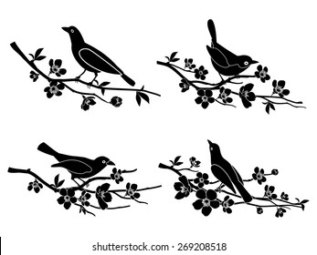 Birds on branches. Nature and animal, silhouette and flower and wildlife Vector illustration