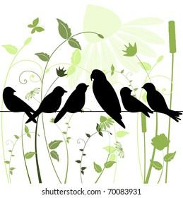 birds on a wire in garden