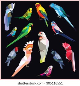 Birds set of colorful low poly parrots isolated on black background.