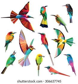 Birds set of colorful meropidae low poly designs isolated on white background.